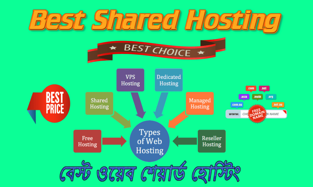 Best Shared Web Hosting Provider